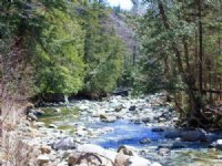 49.2 Acre Pleasant Ridge Ranch,