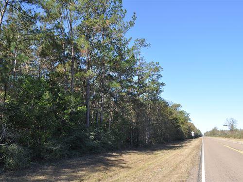 70 Ac Fm 787 W/T Timber : Saratoga : Hardin County : Texas