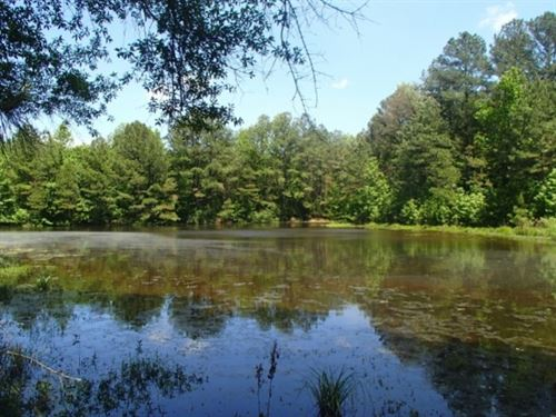 560 Acres In Choctaw/Attala County : French Camp : Choctaw County : Mississippi