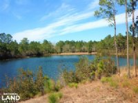 Georgetown Recreational Homesite