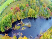 Salmon River 10 Ac 700' Riverbank : Altmar : Oswego County : New York