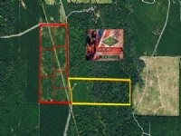 147.70 Acres Hunting Land, Timber