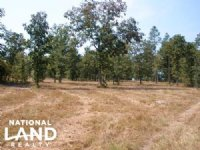 11 Acre Hound Hollow Equestrian Lan