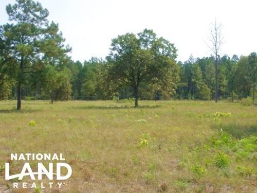 10 Acre Hound Hollow Equestrian Lan : Camden : Kershaw County : South Carolina