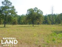 10 Acre Hound Hollow Equestrian Lan