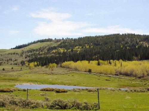 Muddy Mountain Sheep Pasture : Casper : Natrona County : Wyoming