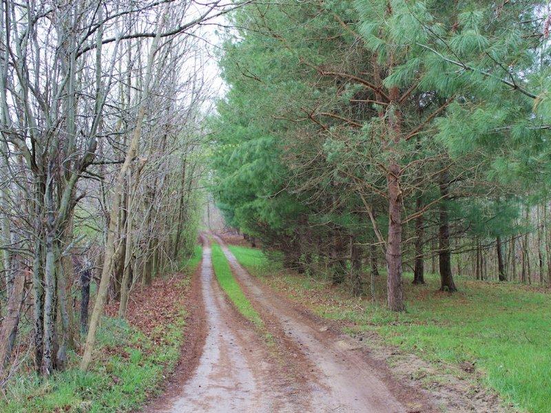 Ransom Rd - 136 Acres : Mount Vernon : Knox County : Ohio