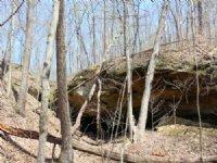 Tick Ridge Rd - 59 Acres