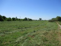 81+/- Ac Hunting, Tillable, Pasture