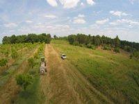 Beautiful Farm, Various Uses