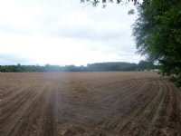 31 Acres Offers Many Possibilities