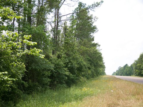 124 Ac Us 190 And Oakhurst Rd. : Oakhurst : San Jacinto County : Texas