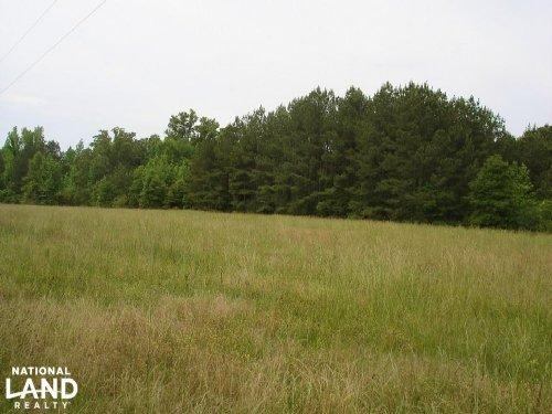 Akron Mini-Farm : Akron : Hale County : Alabama