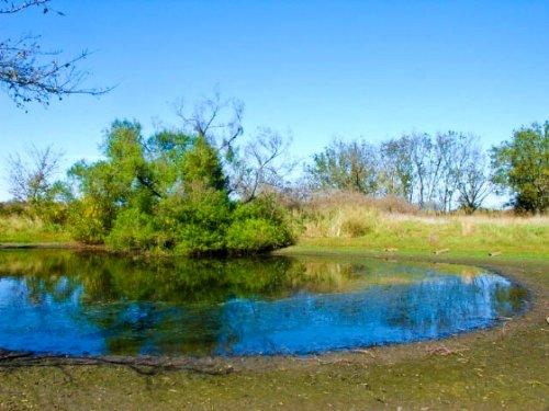 5 Acre Saddlebrook Ranch, Pond : Okemah : Okfuskee County : Oklahoma