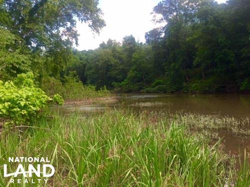 Flint River Adams Island : Thomaston : Upson County : Georgia