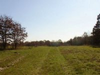 15.7 Acre Tranquility Farms Lot