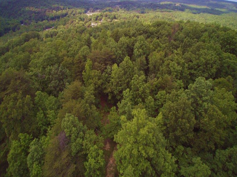 100+/- Acs With Electric And Water : Palmer : Grundy County : Tennessee