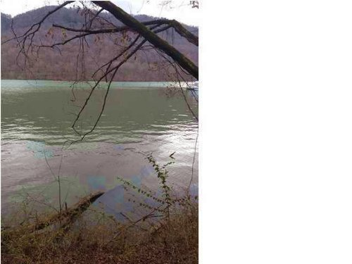 6.49+/- Acres Lake Front : Whitwell : Marion County : Tennessee
