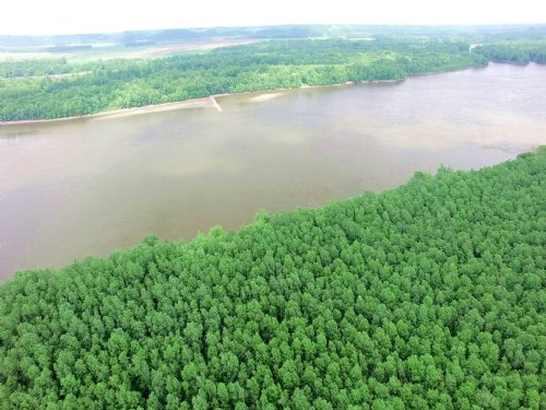 210 Acres - Pike Rd 2 : Annada : Pike County : Missouri