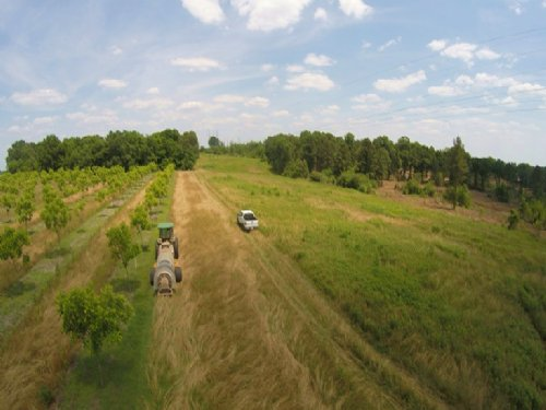 Beautiful Farm - Various Uses : Fort Valley : Peach County : Georgia