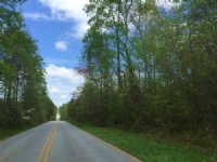48.74 +/- Wooded Acres, Tract 1