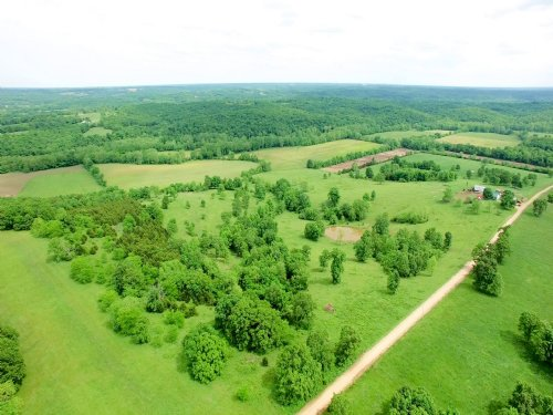 140 Acres - Jaybird Lane : Florence : Morgan County : Missouri