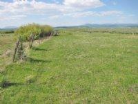 Sycan Pasture Ranch