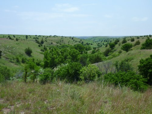 Russell County Oasis : Luray : Russell County : Kansas