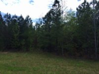 7.84 +/- Wooded Acres, Tract 2