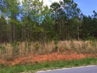 9.89 +/- Wooded Acres, Tract 3