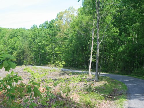 17.95 Acres In Goochland : Columbia : Goochland County : Virginia