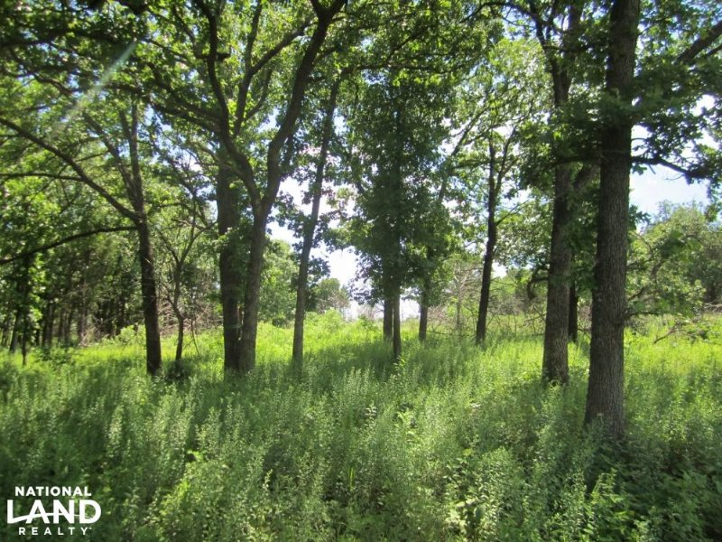 Chautauqua Hunting Land And Cabin : Peru : Chautauqua County : Kansas