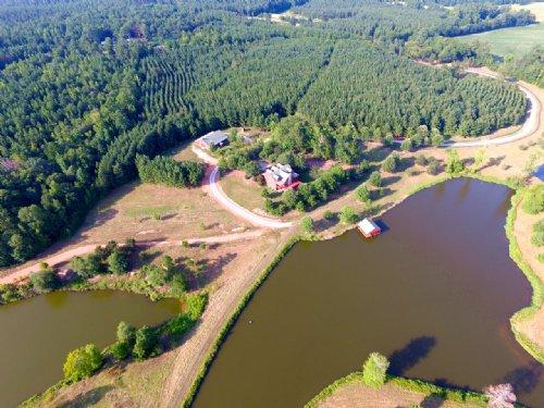 Bent Knee Plantation : Stephens : Oglethorpe County : Georgia
