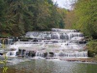 50 Acres Large Waterfall On Creek