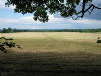 91 Acres Near Village Trumansburg