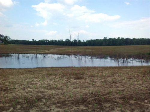 11.66 Acres In Chesterfield, Sc : Chesterfield : South Carolina