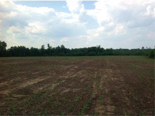 9.27 Acres In Chesterfield, Sc : Chesterfield : South Carolina