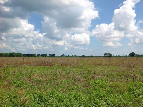 524 Acres In Sumter County, Sc : Dalzell : Sumter County : South Carolina