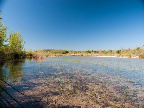 173.5 Acres Nueces River : Uvalde : Texas