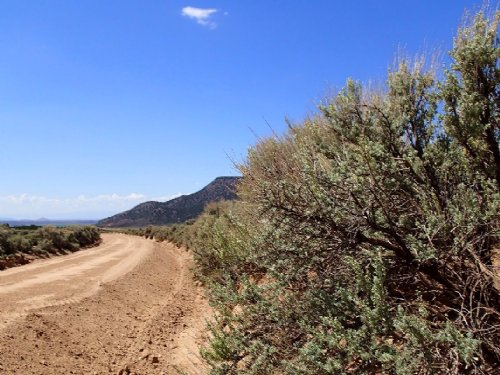 5-Acre Lot For A Great Investment : Fort Garland : Costilla County : Colorado