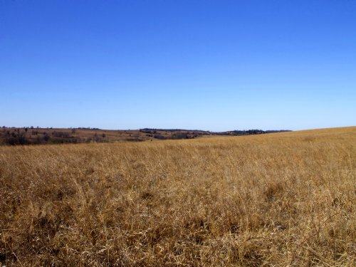 Cowboy Meadows Ranch Land : Caney : Chautauqua County : Kansas