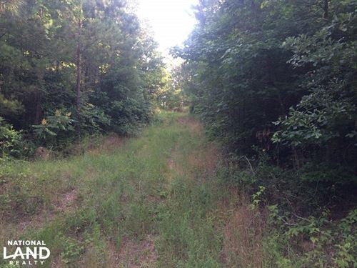 Moundville Hunting & Timber Tract : Moundville : Hale County : Alabama