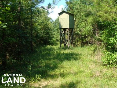 90 Acre Hunting & Timber Tract : Monticello : Drew County : Arkansas