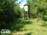 90+/- Acre Hunting & Timber Tract