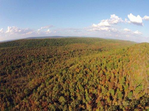 22.05 Acres Lot 88 Indian Ridge Iii : Pittsburg : Oklahoma