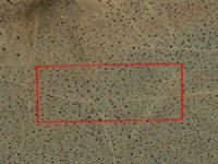 5 Acre Lot Nw Of Barstow