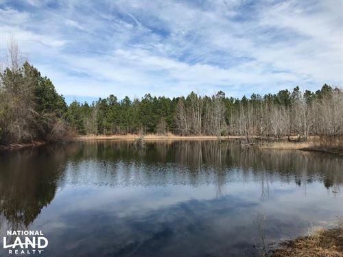 Blundale Pond Hunting/Homesite Prop : Swainsboro : Emanuel County : Georgia