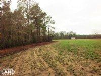 Loris Farming Homesite