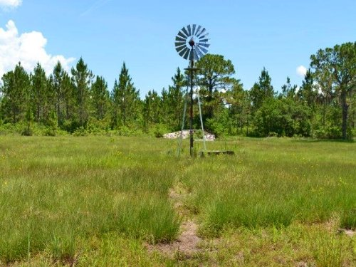 Lake Wales Hunting Preserve : Lake Wales : Polk County : Florida