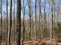 63 Acres Tallapoosa Hwy : Cedartown : Polk County : Georgia
